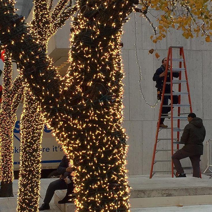 Har du satt upp lite trevlig belysning utomhus än!? Dessa två killar har nog hållit på ett antal dagar med att snurra runt lampslingor varv efter varv efter varv efter varv eftervarv efter var efter varv efter varv efter varv kring ett 20-tal träd - ända ut i grenarna! Vilket arbete! Vilket resultat!  #jul #belysning #christmas #joulu #lights #newyork