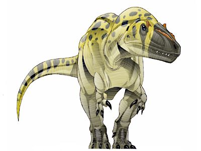 17 best images about dinosauricon m megalosauridae on