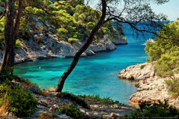 "Calanque de Port Pin, between Cassis and Marseille. The best part about hiking in the Calanques is experiencing a few joyful moments of the ""South of France lifestyle:"" The little sea-breeze that comes, taking a rest under the pine trees, and listening to the cicadas... http://www.visiontimes.com/2015/02/12/my-top-5-natural-landmarks-to-explore-in-the-south-of-france.html"