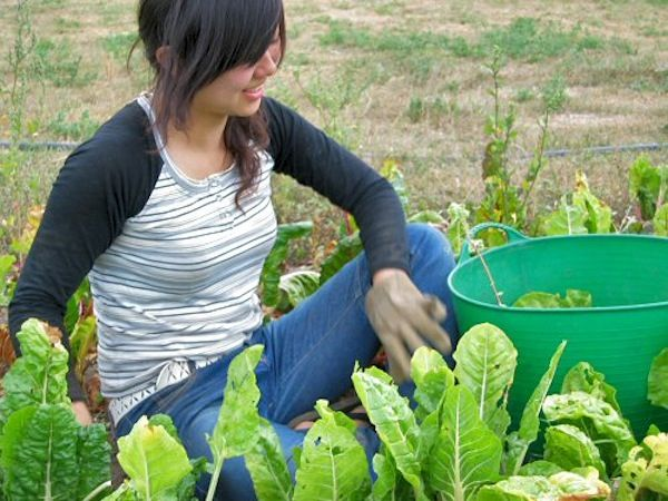 Bahhh so I just found out this existed today and it is the most perfect timing! A first-timer's guide to WWOOF-ing | Matador Network---getting so excited!!!!!
