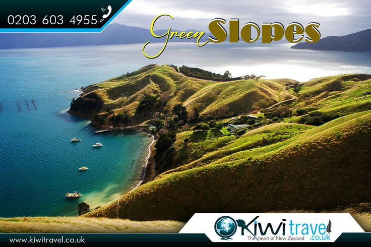 Green #Slopes - #NZ: #GreenSlopes #CoastalFarm #Queensland #kiwitravel #flightstonewzealand  |   #NewZealand #travelexperts : http://www.kiwitravel.co.uk/