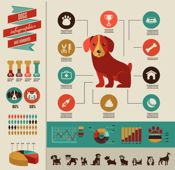 Dogs infographic by Marina Zlochin, via Behance