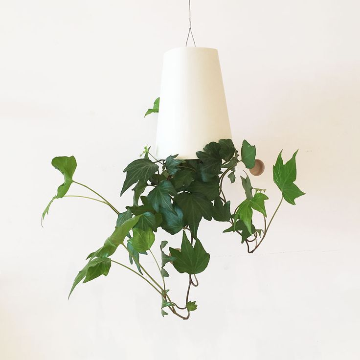 Small White Hanging Boskke Sky Planter: This contemporary self watering hanging plant pot is ideal for those with a busy lifestyle. The Sky Planter Recycled wastes nothing. It doesn't take up any floor space, it is made from recycled plastic, and its Slo-Flo irrigation system meters out the water your plant needs for up to two weeks between refills. Simply top the pot up with water at the top and allow the specially designed irrigation system to water your plant for you. Perfect for low…