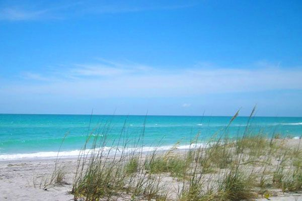 Manasota Key, Florida another great beach we tried this time and it has shark teeth!