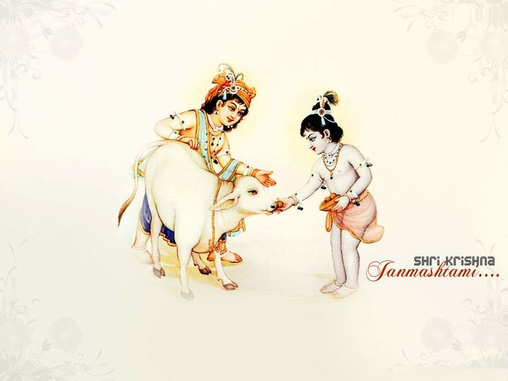 Best Krishna Images On Pinterest Birthday Celebrations - Top 20 krishna ji images wallpapers pictures pics photos latest collection hd wallpapers