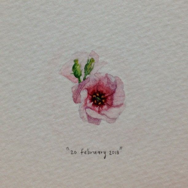 Day 51 : Lisianthus - tiny watercolour | 365 Paintings For Ants / Lorraine Loots