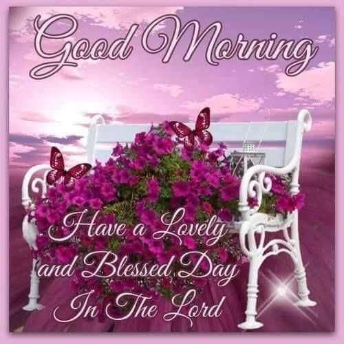 Good Morning Have A Blessed Day In The Lord Pictures, Photos, and Images for Facebook, Tumblr, Pinterest, and Twitter