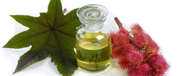 http://loss-of-weight-allegiance.com/loss-of-weight-castor-oil-benefits-health-uses-hair-therapy-arandi/