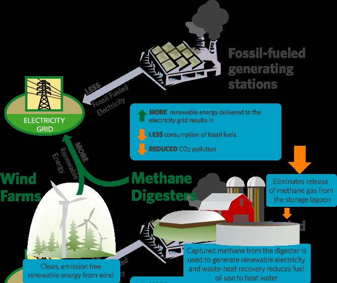 How Carbon Offsets Work | NativeEnergy