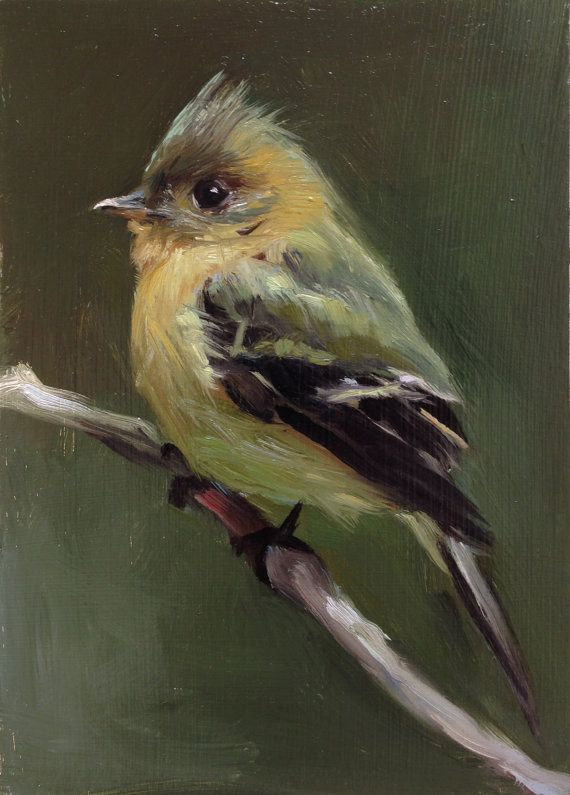 Tufted Flycatcher Open Edition Print of Original oil by FinchArts, $20.00