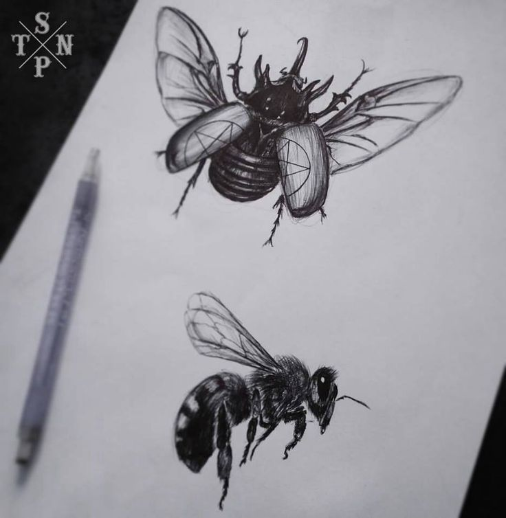 Dessins par Flo #blackandgrey #blackandwhite #drawing #sketch #realistic #sangpiternel #cannes #tattoo #tatouage