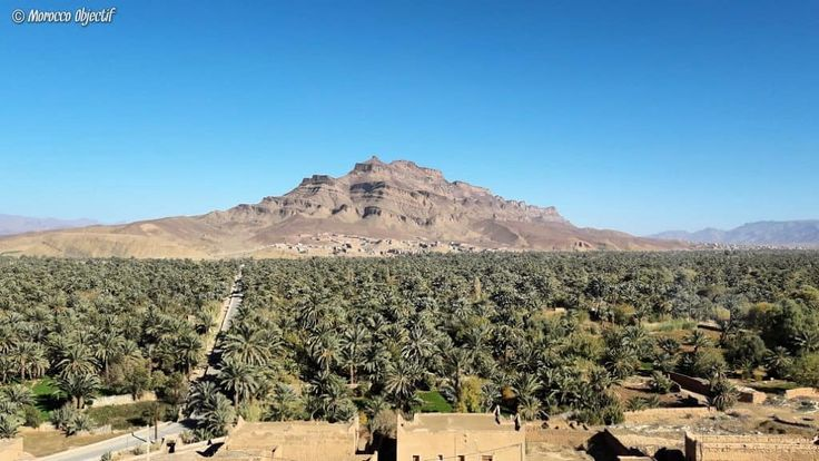 "Jebel Kissane is a mountain located in the middle of Draa Valley, near the town of Agdz. The significance of Kissane is ""glasses"" in Arabic, the name being given by the aspect of tea glasses behind a tea pot created by this mountain.  http://www.morocco-objectif.com/  #moroccoobjectif #jebel #kissane #mountain #glasses #oasis #palmtrees #agdz #draavalley #nature #amazingplaces #nomad #berber #amazigh #travel #travelphotography #instatravel #travelgram #traveler #morocco #maroc #marruecos"