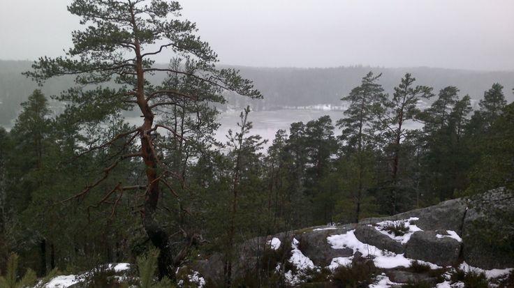 Smell of winter. The view over Pitkäjärvi Lake, Nuuksio. January 2nd