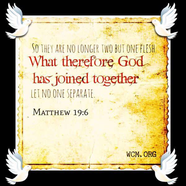 This Is A Great Verse To Use While Performing Your First Wedding Ceremony Visit Us