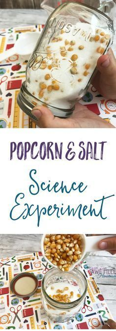 What happens to the popcorn and salt in this easy science experiment? This is so fun, and easy to do at home! Science can be fun, and frugal! via @AFHomemaker