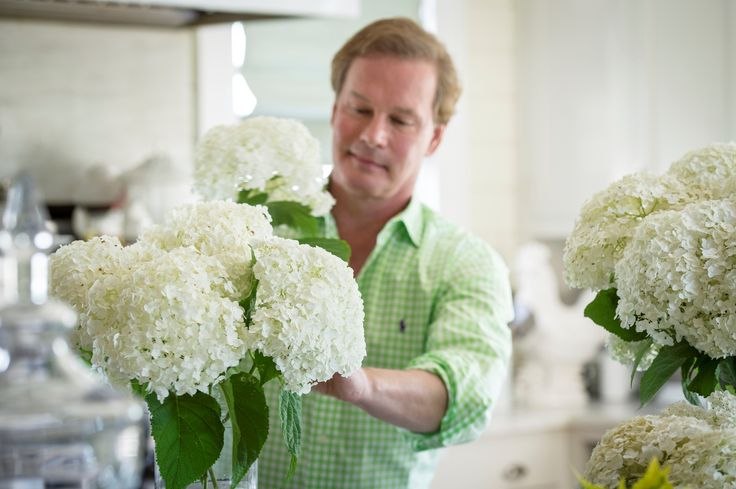 Use these tips from P. Allen Smith to get the most from your cut hydrangeas!