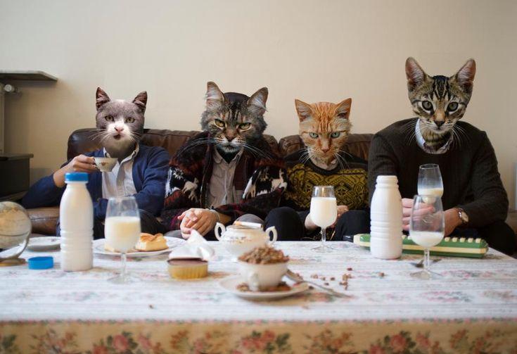 """Paulette / ITW : """"De Damon Albarn à Trent Reznor, le quatuor créé un son singulier qui combine les goûts musicaux des 4 membres. Jeu, set et Match.""""   13/05/2013"""