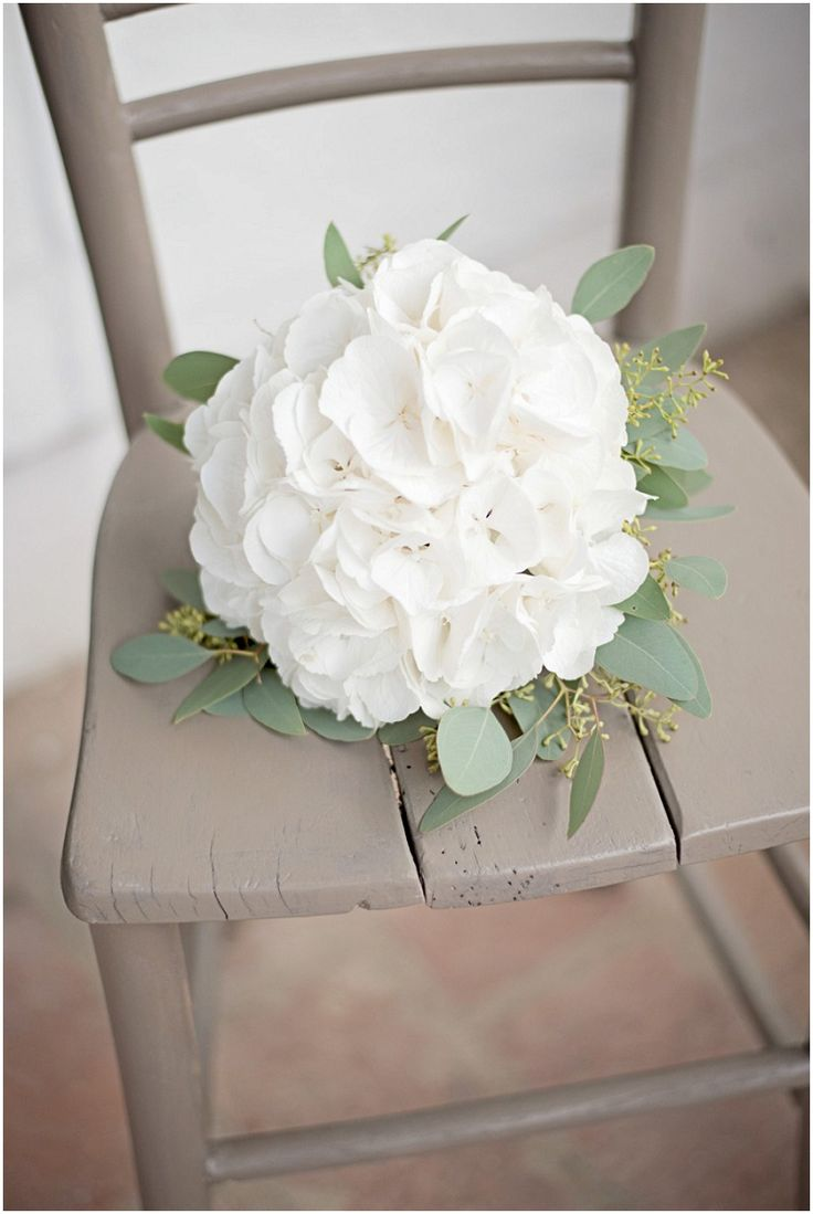 302 best hortensien modern klassisch hydrangea images. Black Bedroom Furniture Sets. Home Design Ideas