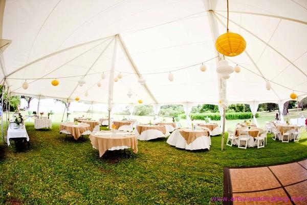 Rainingblossoms Wedding Receptions Tents Decoration: 219 Best Wedding Ideas Images On Pinterest