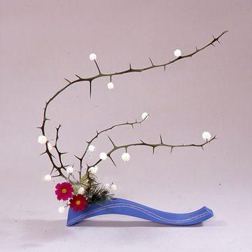 いけばな・華道 創美流kadou-soubiryu-ikebana枳殻、秋桜、風船唐綿、松葉、ポプラコーン