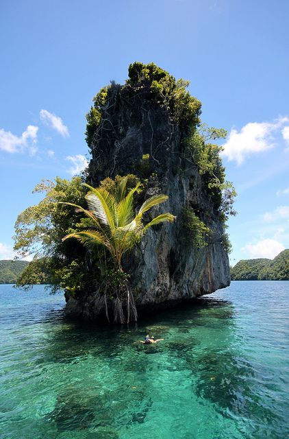 Snorkeling near a rock in Palau Islands, Micronesia