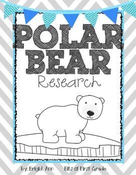 Polar Bear Research