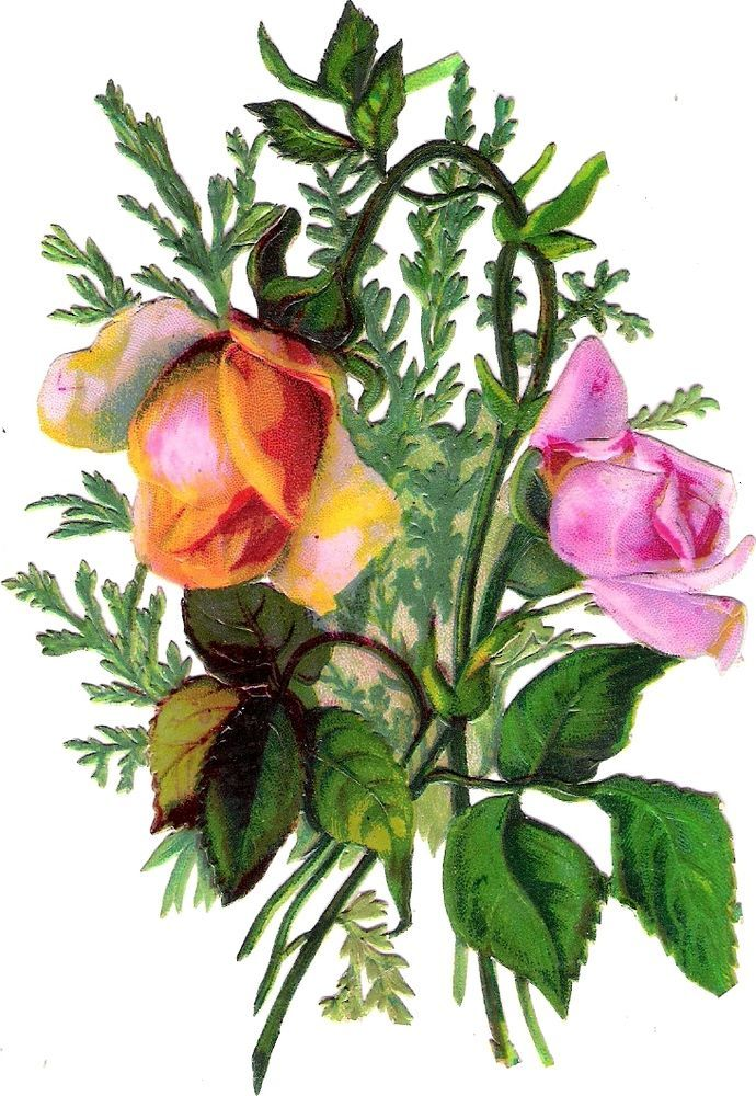 Oblaten Glanzbild scrap die cut chromo Blume flower Rose 13,5 cm