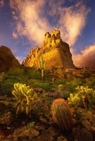 Superstition Mountains, Arizona - Holiday$pots4u