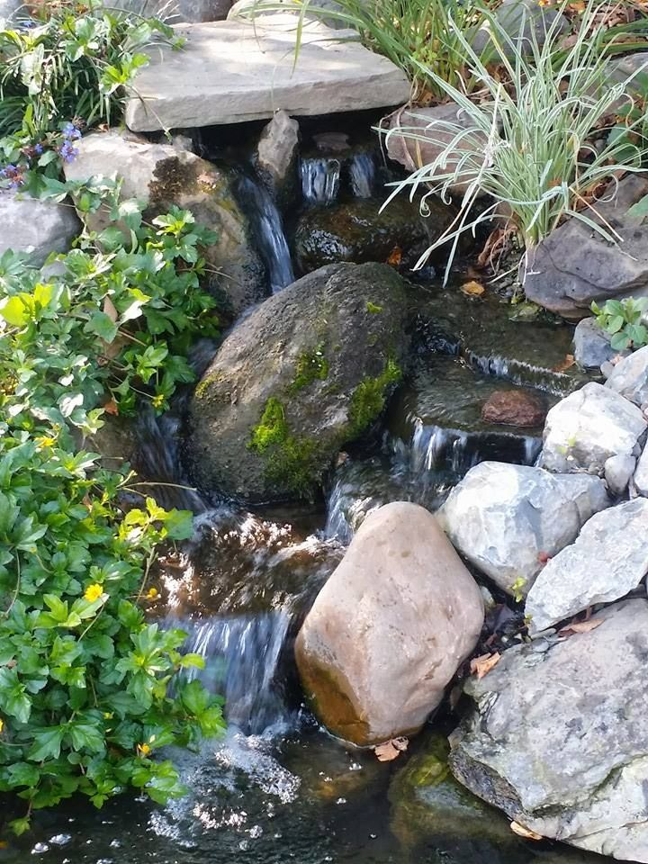 "Whether your desire is to create a habitat for wildlife with our ""Pondless® Waterfall"", a #watergarden will transform your outdoor living area and become the focal point of your garden! #pond #waterfall #landscaping"