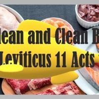 Unclean And Clean Beasts. Leviticus 11 Acts 10 by Looking for that blessed hope, on SoundCloud