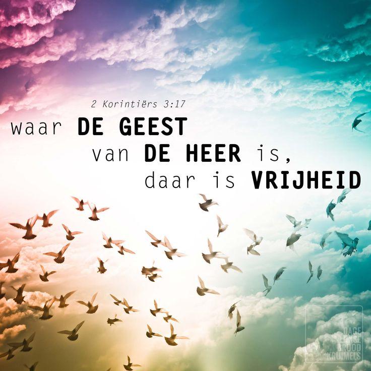 Waar de Geest van de Heer is daar is vrijheid.2 Korintiërs 3:17   http://www.dagelijksebroodkruimels.nl/quotes-bijbel/2-korintiers-3-17/