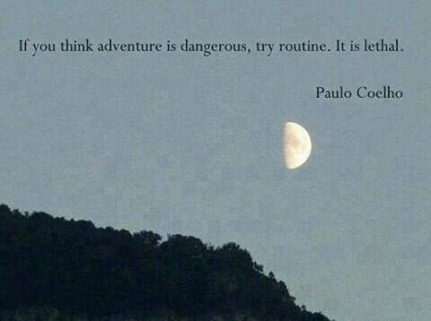 Paulo Coelho Quotes 54 Best Paulo Coelho Quotes Images On Pinterest  Inspiring Quotes