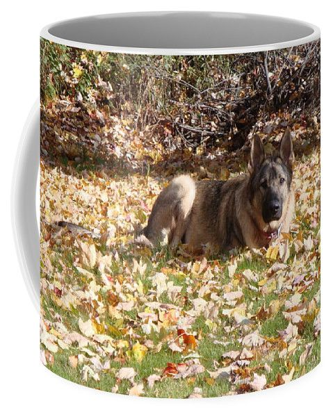 Dog Coffee Mug featuring the photograph Dog German Shepherd by Lyssjart Sj