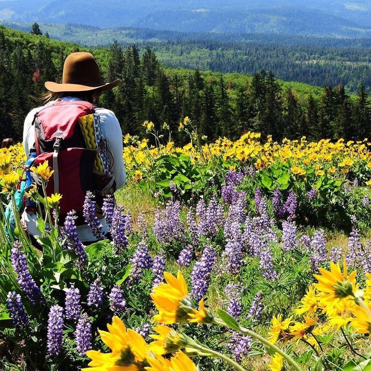 10 Oregon wildflower hikes that are blooming right now |       http://OregonLive.com