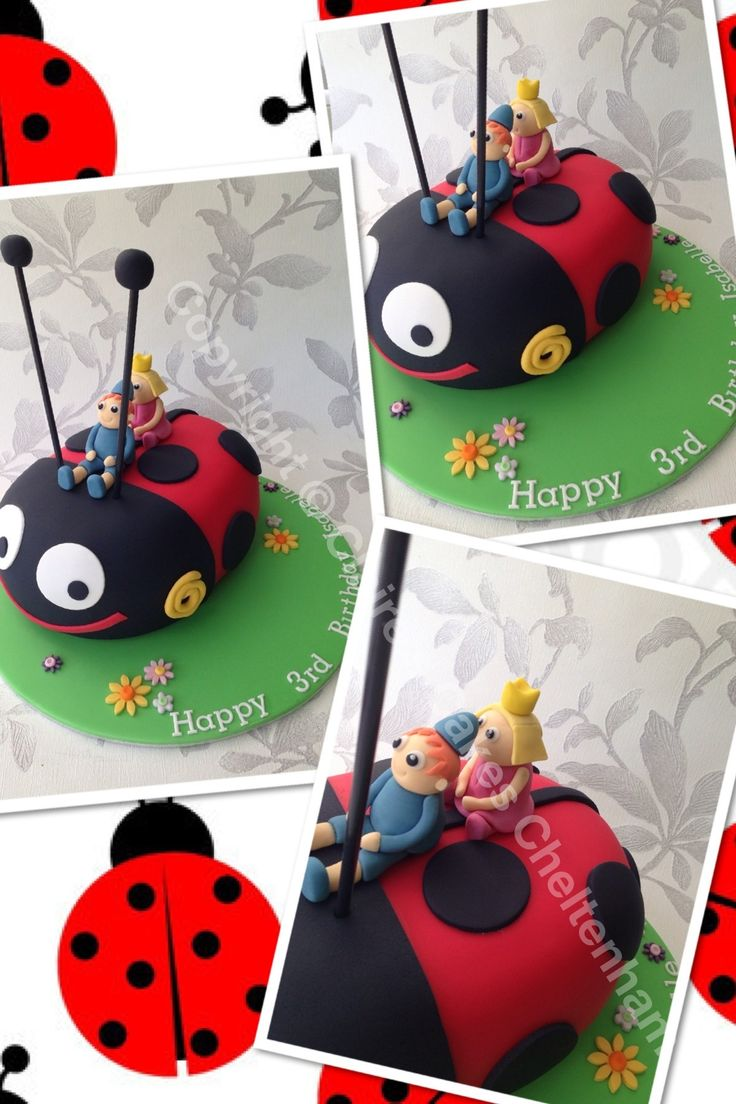 Ben & holly ladybird birthday cake