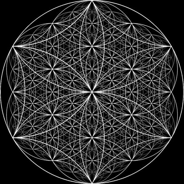 Flower of Life https://www.facebook.com/JamieJanover.artist.profile/photos/a.393851578906.174268.57889468906/10152540201553907/?type=1&theater