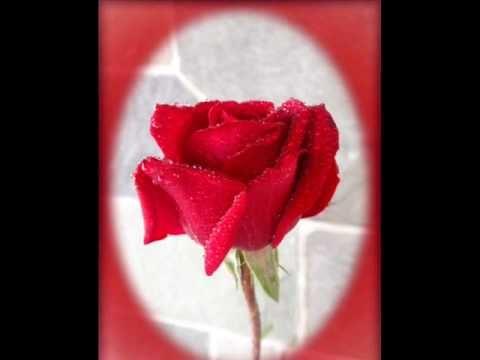 Χρόνια πολλά !!!  Σας εύχομαι ευτυχία, χαρά και υγεία.