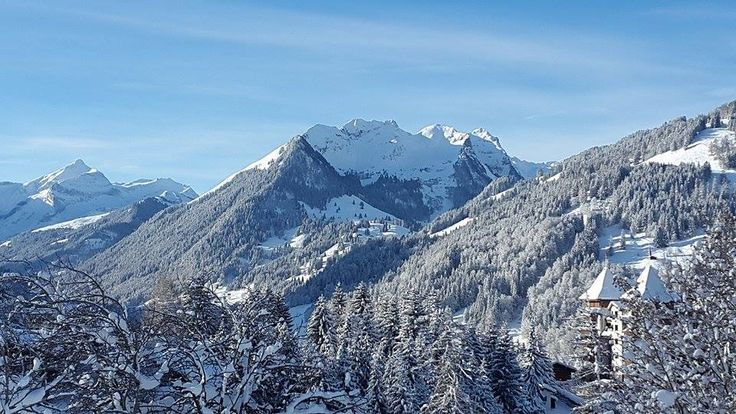 Hidden hotel game: Can you find The Alpina Gstaad? #beyondtheexpected #thealpinagstaad
