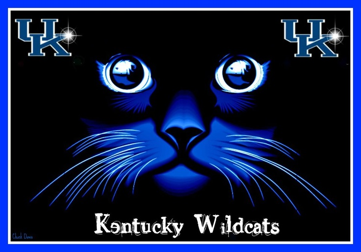 1000+ Images About Kentucky Wildcats On Pinterest