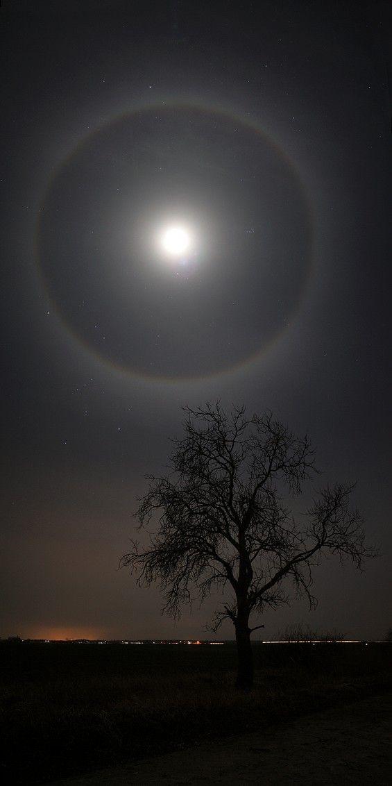 The amazing phenomenon halo around the Moon...