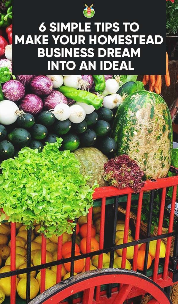 6 Tips to Monetize Your Homestead and Make Profit From the ...