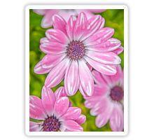 Sticker #sticker #redbubble #macsnapshot #pinkflowersticker #beautifulflowers