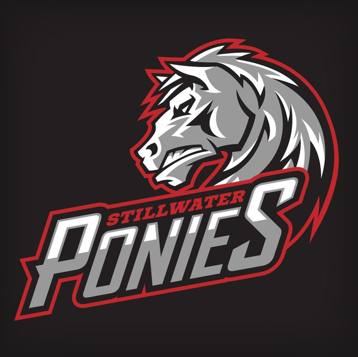 Sports Identity & Mascot Design/Branding by BrendanCollins - 11037