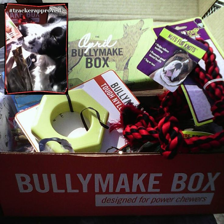 BullyMake Subscription Box for Dogs contains quality toys and treats that are delivered to your door each month. Free Shipping within USA, $8 to Canada.