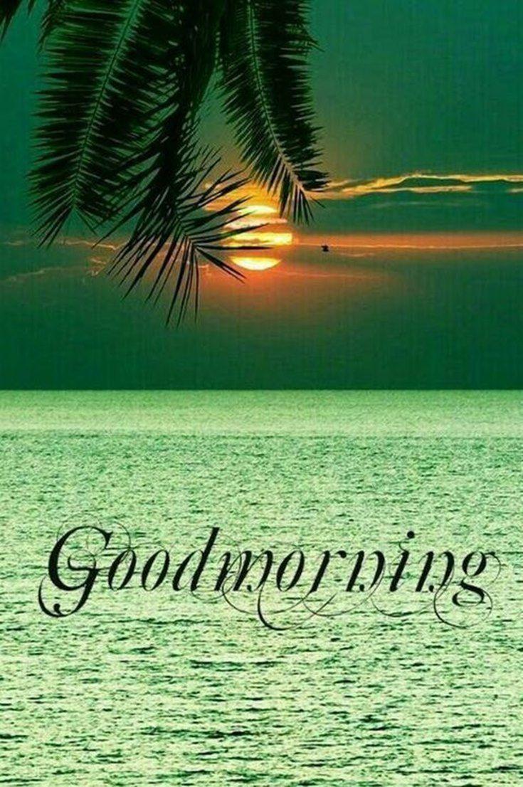 57 Der Guten Morgen Zitate Und Bilder Positive Energie Fur Guten Morgen 12 57 Der Guten Morgen Z In 2020 Good Morning Images Good Night Image Good Night Love Images