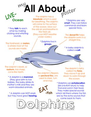 "My All About Dolphins Book - Ocean Animal Unit Study from Courtney McKerley on TeachersNotebook.com -  (9 pages)  - This ""All About Book"" will be a fun addition to your classroom and lesson on dolphins. This packet can be used along with books specific to the animal or it can be used on its own. Other animals you will see in the ocean animal series include the sea hors"