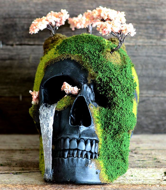 These Unique Bonsai Skulls Are Fascinating and Creepy