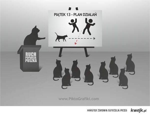 Piątek 13-go - najbardziej pracowity dzień wszystkich czarnych kotów