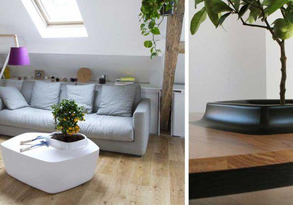 Tuto Fabriquez Une Superbe Table Basse En Bois Brut Pour