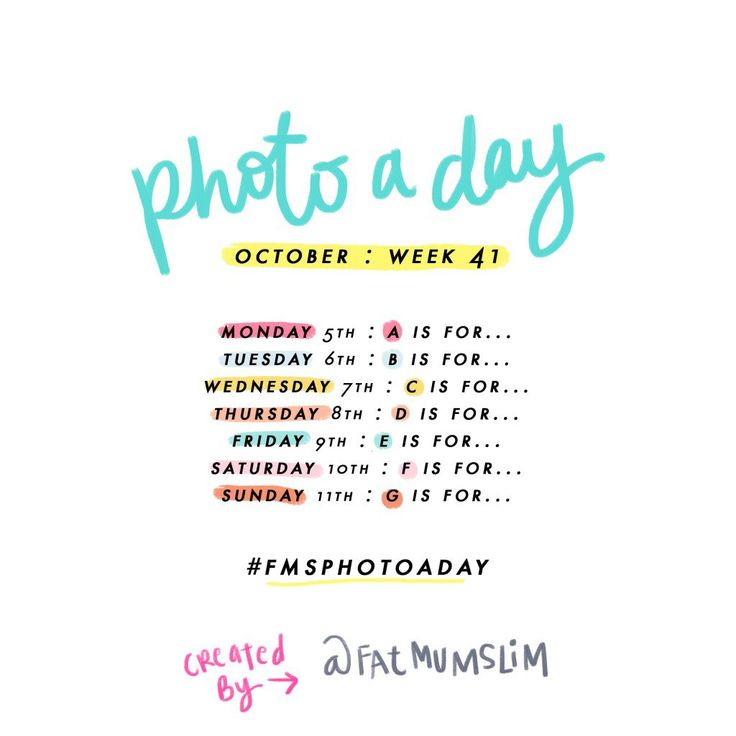 photo a day challenge week 41